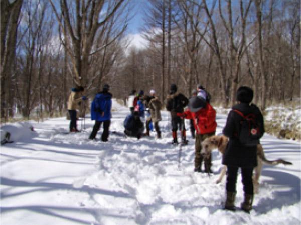活動の様子:冬のアニマルトラッキング