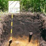 山岳科学土壌調査法実習