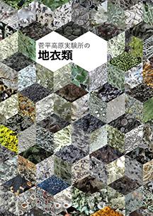 菅平高原実験所の地衣類